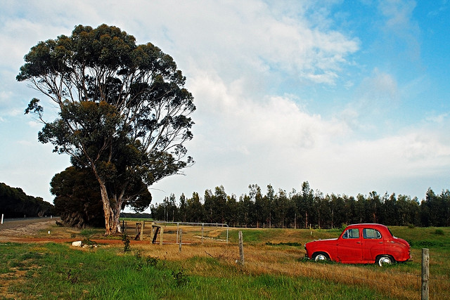 What are the top things to do in Kangaroo Island?  One of them could be relaxing amidst a country setting such as this...
